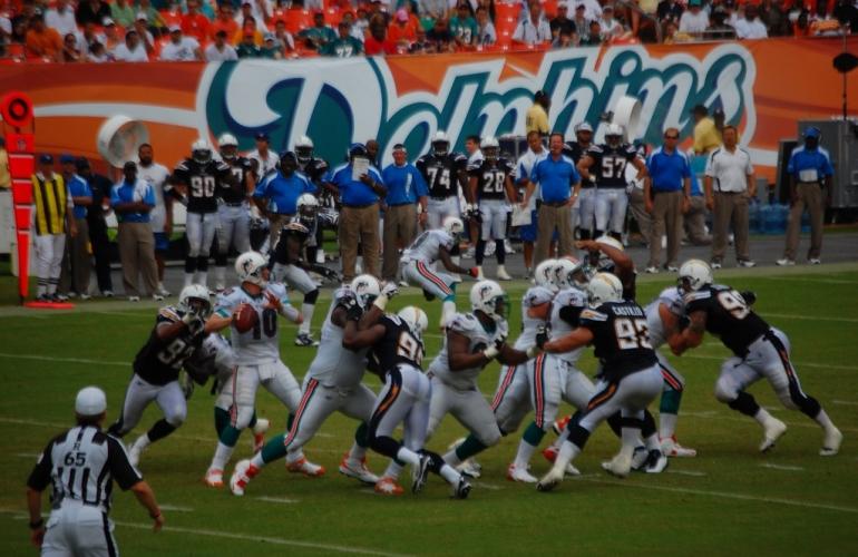 Dolphins Football Activités Culturelles - Paradise Events - Organisation Evénement et Séjours d'Exception Miami, Floride & Paris